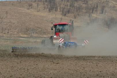 Амурские аграрии увеличат посевные площади