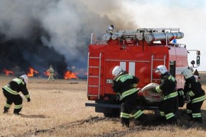 Масштабные учения по тушению лесных пожаров прошли в Тамбовском районе