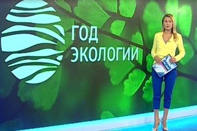 Об экологической ситуации в Амурской области