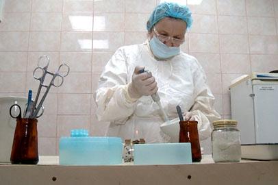 В Приамурье выросло число пострадавших от укусов клещей