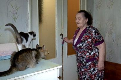 Пенсионерка из Благовещенска предлагает бесплатную комнату в обмен на соседство с 26 кошками