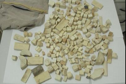 Благовещенские таможенники изъяли у гражданина КНР 240 фрагментов  бивней мамонта