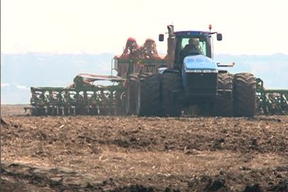 Студенты ДальГАУ помогают сельхозпредприятиям области управиться с посевом