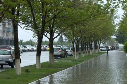 Дожди в Приамурье приведут к снижению температуры