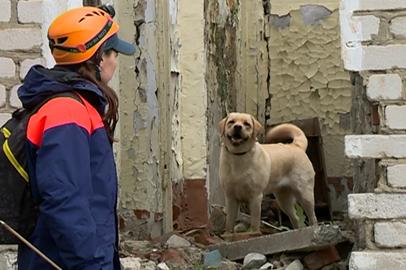 Служебные собаки искали условно пострадавших в техногенной катастрофе