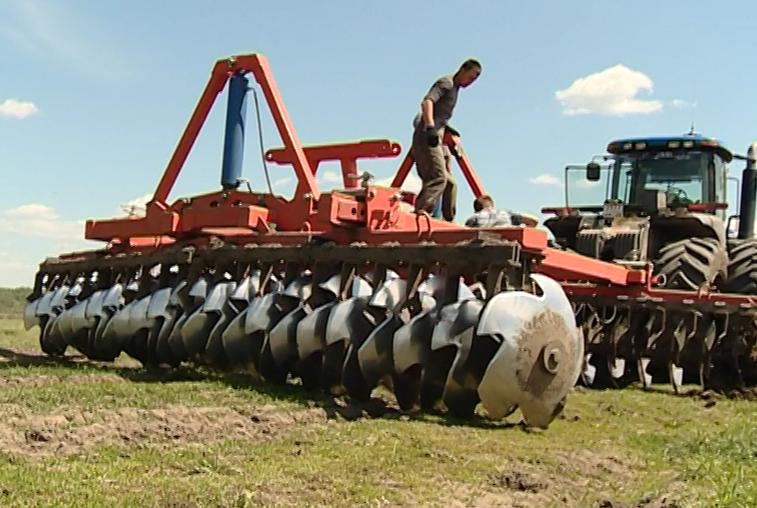 Есть опыт, будет и работа: амурские студенты проходят практику на сельхозпредприятиях