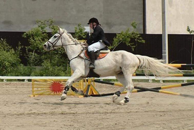 Чемпионат Дальнего Востока по конному спорту впервые прошел в Благовещенске