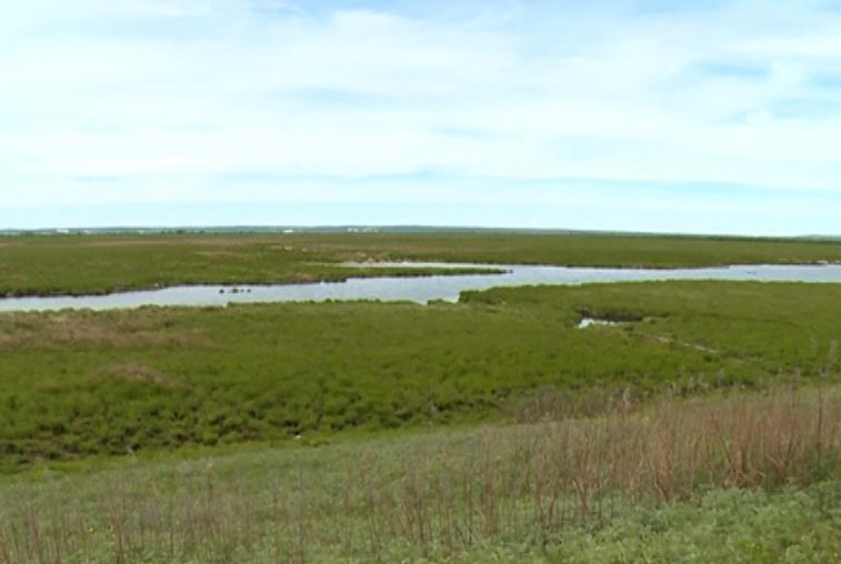 Границы амурского села Новопетровка расширятся в рамках программы о гектаре