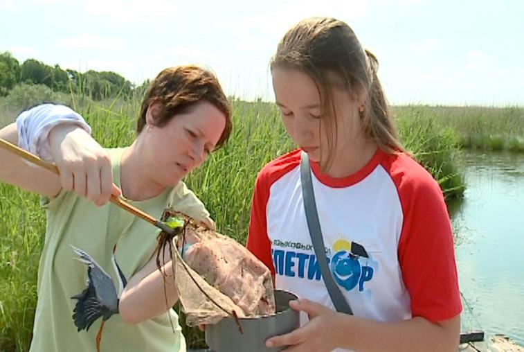 О природе на английском: языковую школу организовали в Муравьёвском парке
