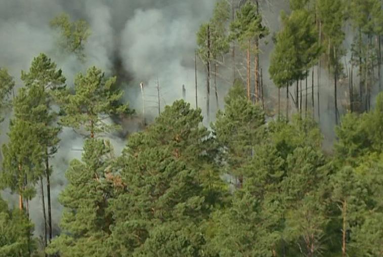 Жара спровоцировала возникновение природных пожаров на севере Приамурья