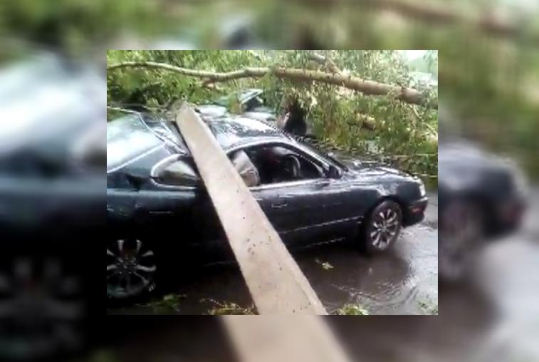 Сильный ветер ломал деревья и обрывал провода в Приамурье