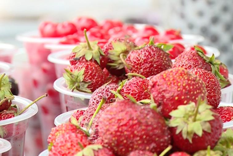 Свежий урожай заполнил рынки Приамурья