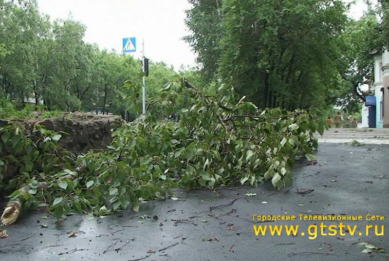 Улицы Райчихинска очищают от поваленных деревьев