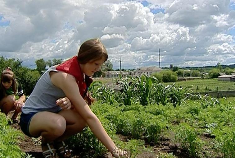 Земледелец — это звучит гордо. Свободненские подростки постигают азы агрономии