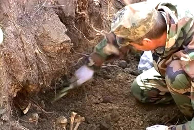 Амурские поисковики обнаружили останки двух красноармейцев под Волгоградом