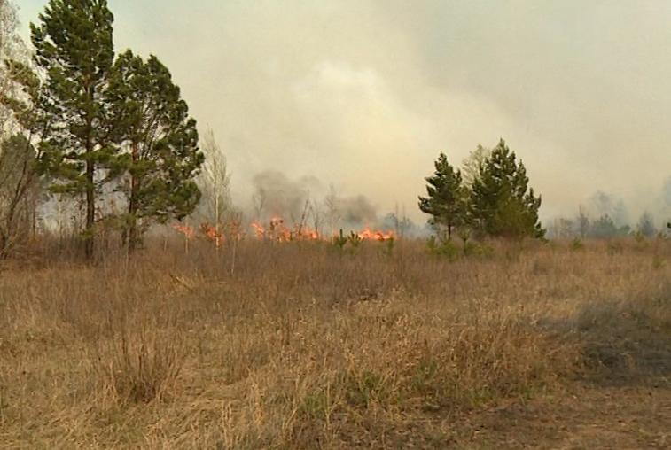 Особый противопожарный режим объявлен в Приамурье