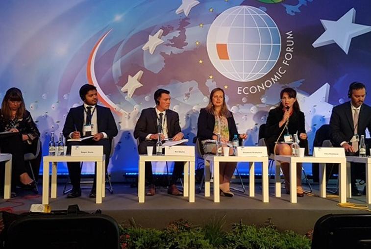 Научный сотрудник АмГУ приняла участие в Международном экономическом форуме в Польше