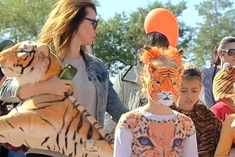 Юные благовещенцы пройдут по улицам в костюмах тигра