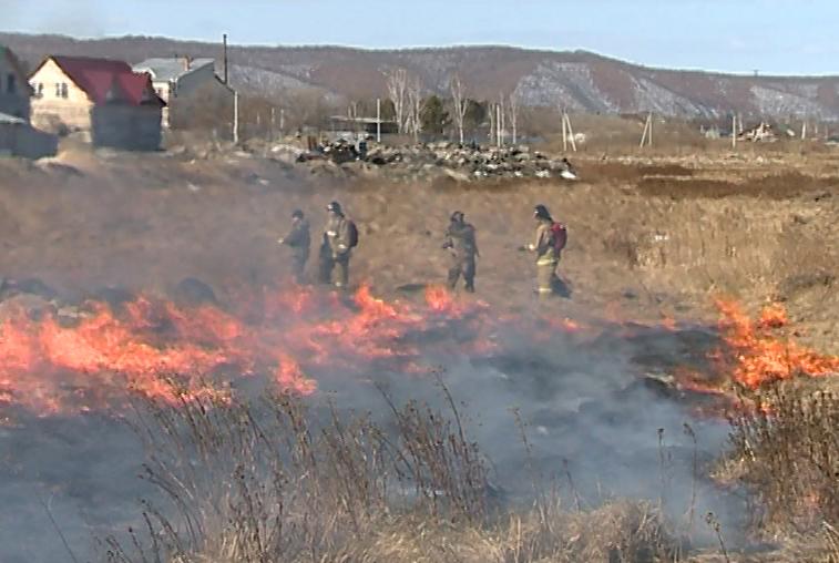 В правительстве Приамурья обсудили подготовку к весеннему пожароопасному сезону