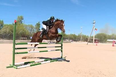 Областные соревнования по конному спорту собрали более 30 всадников