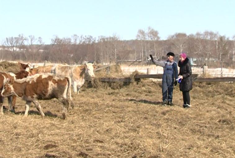 В Приамурье выдано около 5 тысяч бесплатных гектаров