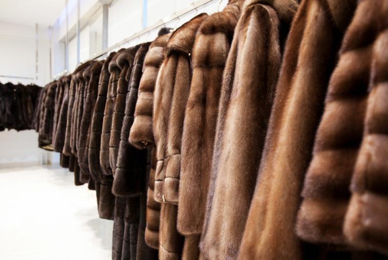 В торговом центре Благовещенска конфисковали больше сотни шуб