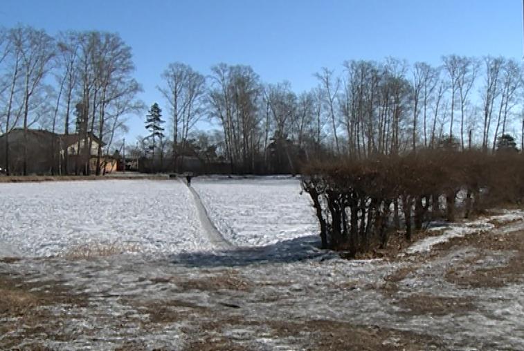 В Ивановке планируют построить детскую площадку и благоустроить парк с озером лотосов