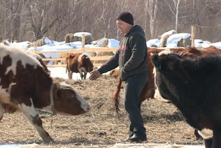 Проживающие за рубежом россияне смогут получить дальневосточный гектар
