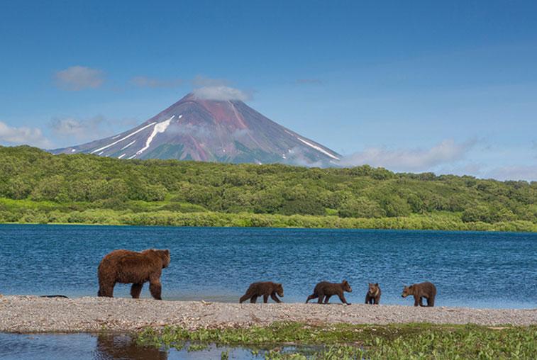 Обладатели гектаров на Дальнем Востоке создают туристическую ассоциацию