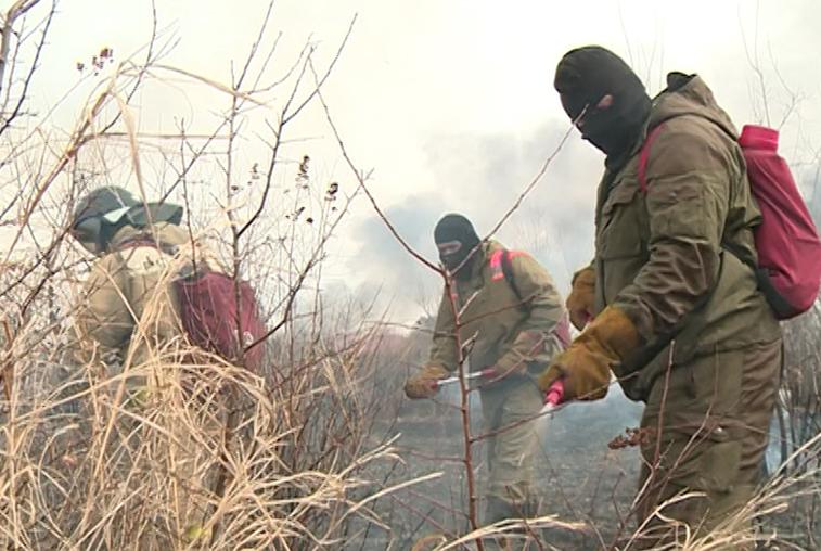 Подготовку к пожароопасному сезону в Приамурье проводят специальные бригады