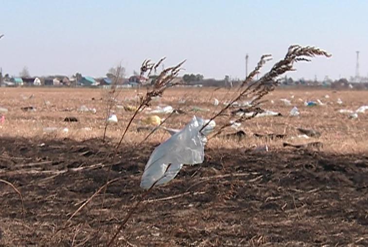 Свалка возле села Волково вошла в федеральный проект «Генеральная уборка»