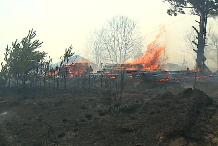 Пожарные отстояли село Маргаритовка Мазановского района