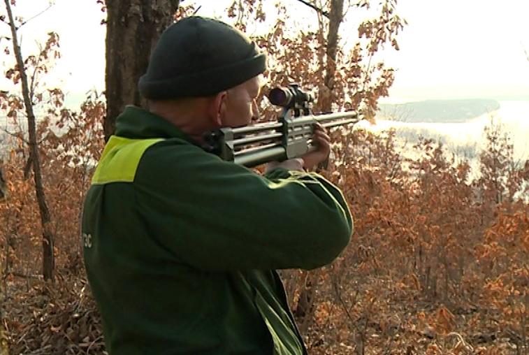 Сезон охоты на диких птиц стартует в Приамурье