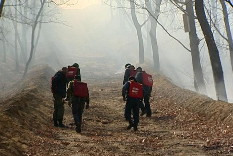 Благовещенские пожарные ликвидировали пал на турбазе «Снежинка»