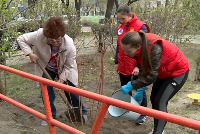 Ветераны труда вместе с молодежью высадили деревья в Благовещенске