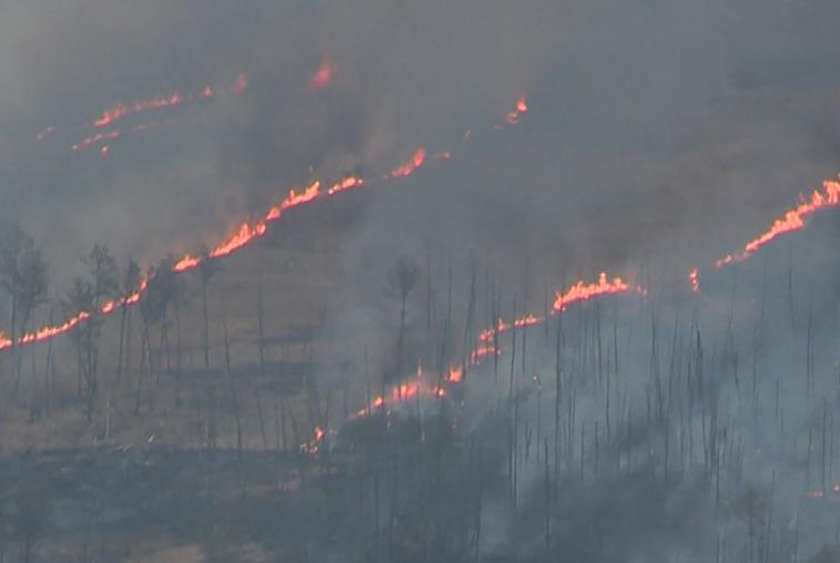 Неделя упорной борьбы и дождь помогли устранить крупный очаг пожара в Мазановском районе