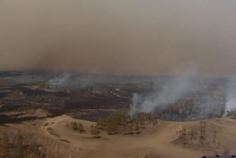 До 100 000 рублей и выше заплатят поджигатели и ответственные за возгорания земель в Приамурье