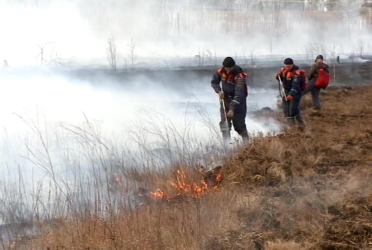 Около 700 человек и 80 единиц техники продолжают бороться с пожарами в Приамурье