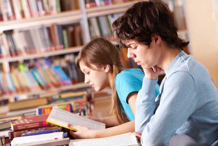 Совместно с РКС в Приамурье будет разработана программа поддержки чтения