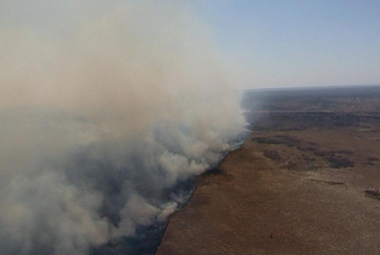 Около 70 человек направлены на поиски пропавшего пожарного из Марий Эл на севере Приамурья