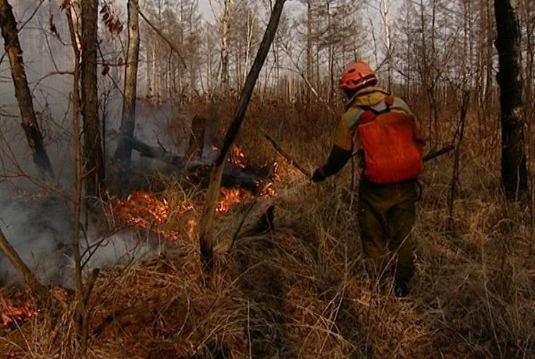 Пожароопасная обстановка в трёх районах Приамурья остаётся сложной