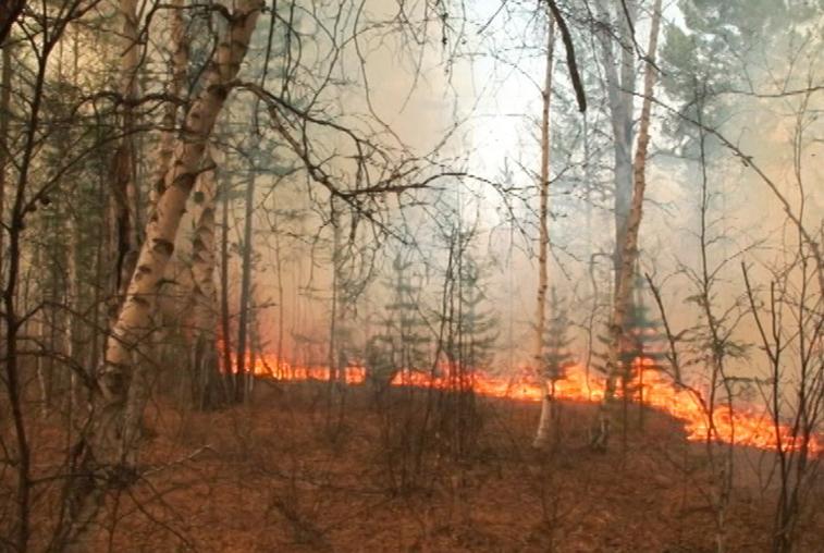 1500 гектаров за 7 дней: пожарные ликвидировали очаг в 60 км от села Янсай Мазановского района