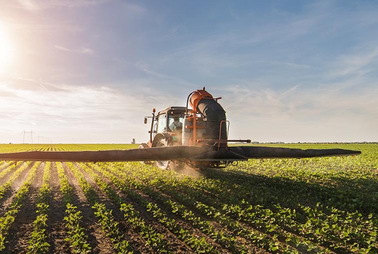 Царица амурских полей: что мешает расширению экспорта сои в КНР