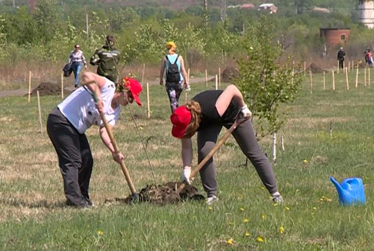 Благовещенцы озеленили сквер в День посадки леса
