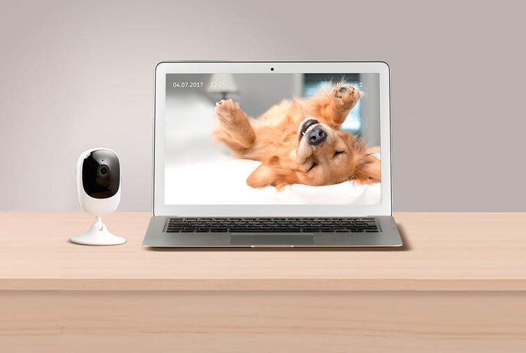 «Ростелеком» предлагает умные решения для видеонаблюдения внутри дома и за его пределами