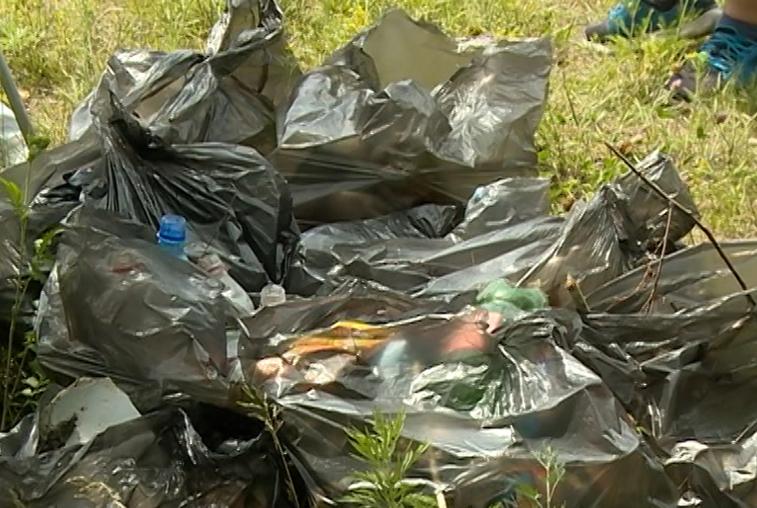 Стоимость вывоза мусора для амурчан не повысилась