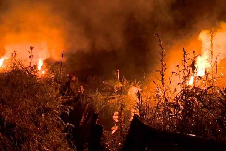 Тактику ведения ночного боя впервые совместно отработали подразделения ВВО