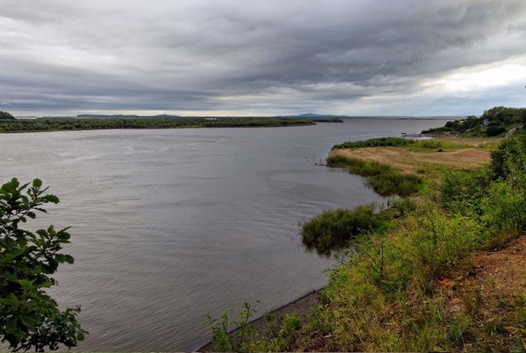 Повышение уровня рек прогнозируют в Приамурье