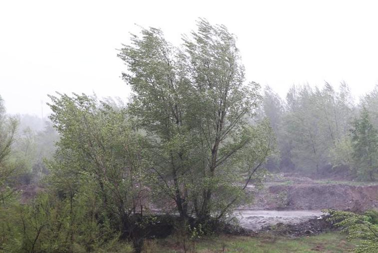 Штормовое предупреждение выпустили амурские метеорологи