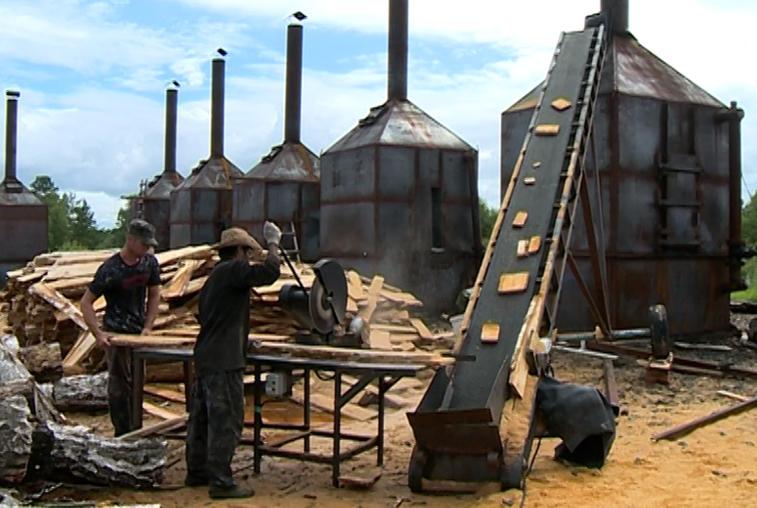 Бизнес с огоньком: завод по производству древесного угля открыли получатели гектара